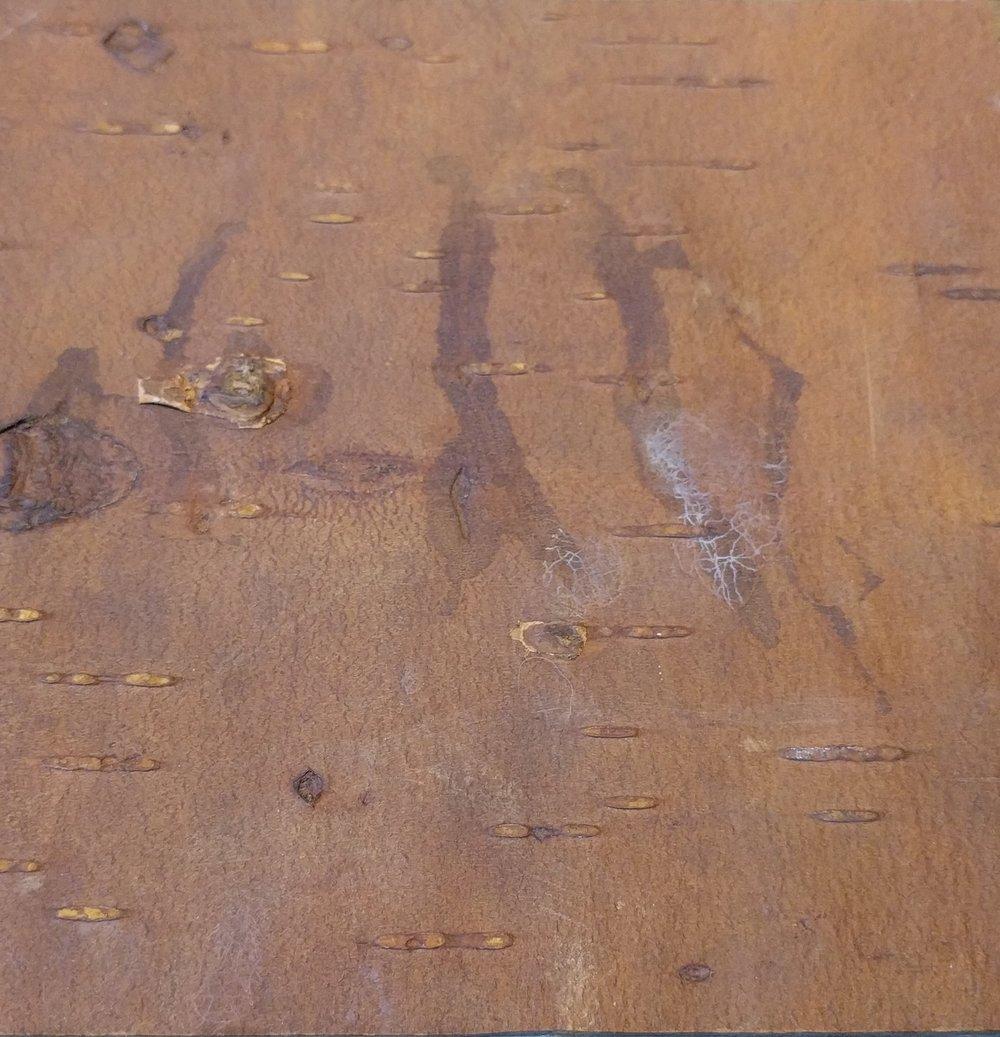 Finish 4 - Bark House Pin Cherry Leather Laminate