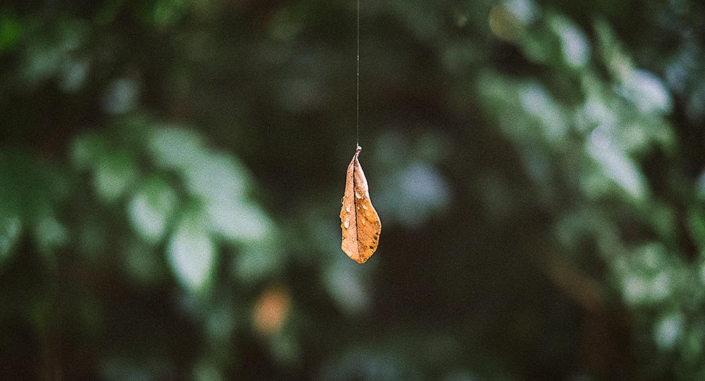 Hangin' on by a thread