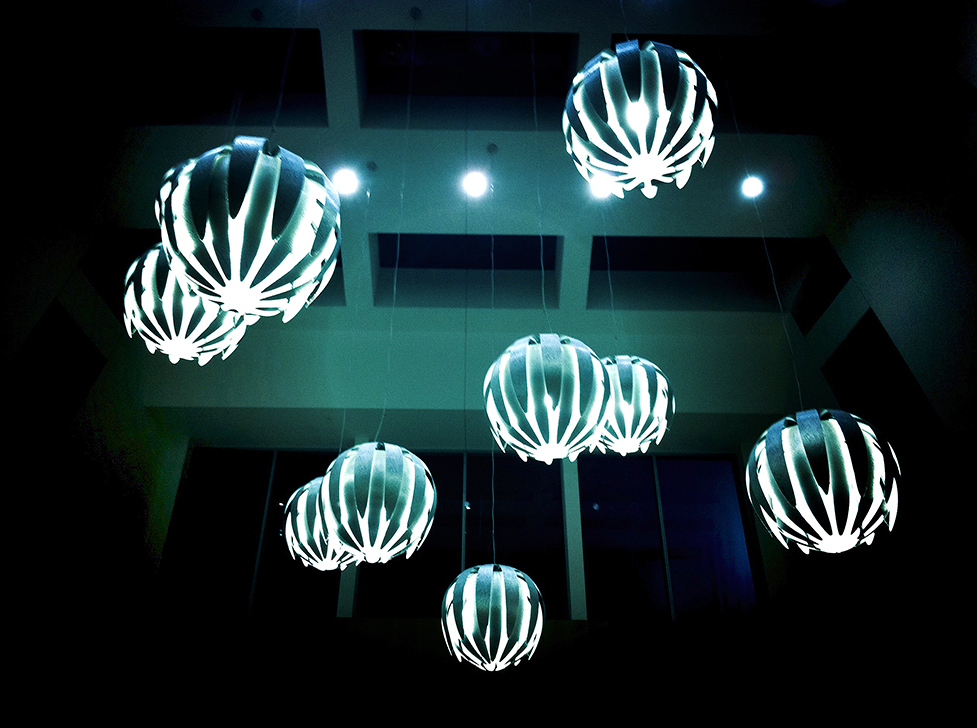 I have to avoid electric jellyfish after dark
