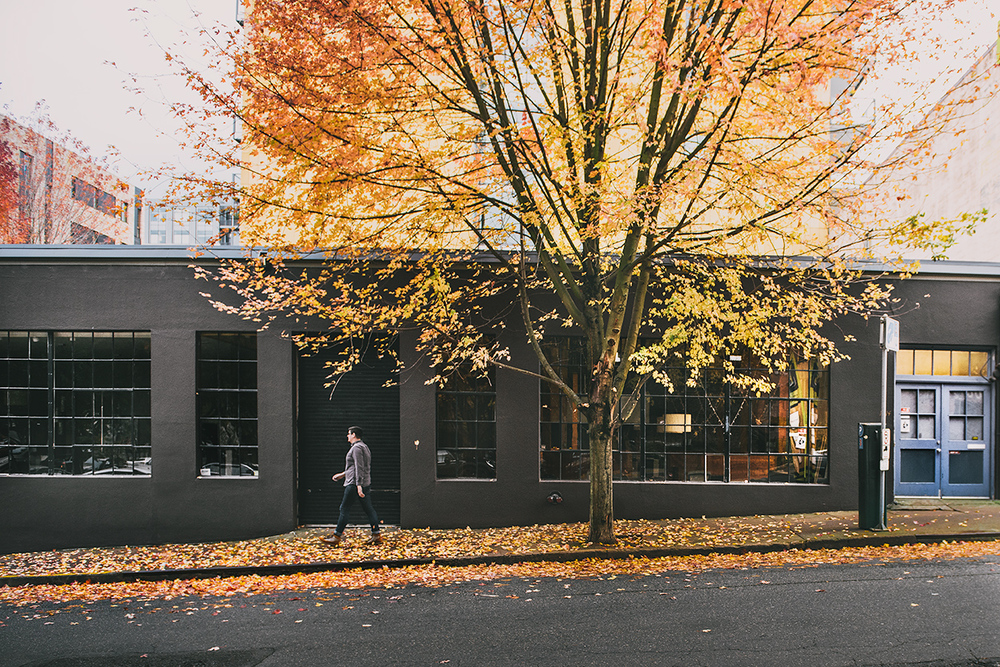 Pearl District in Fall. Photo by the talented Gabby.
