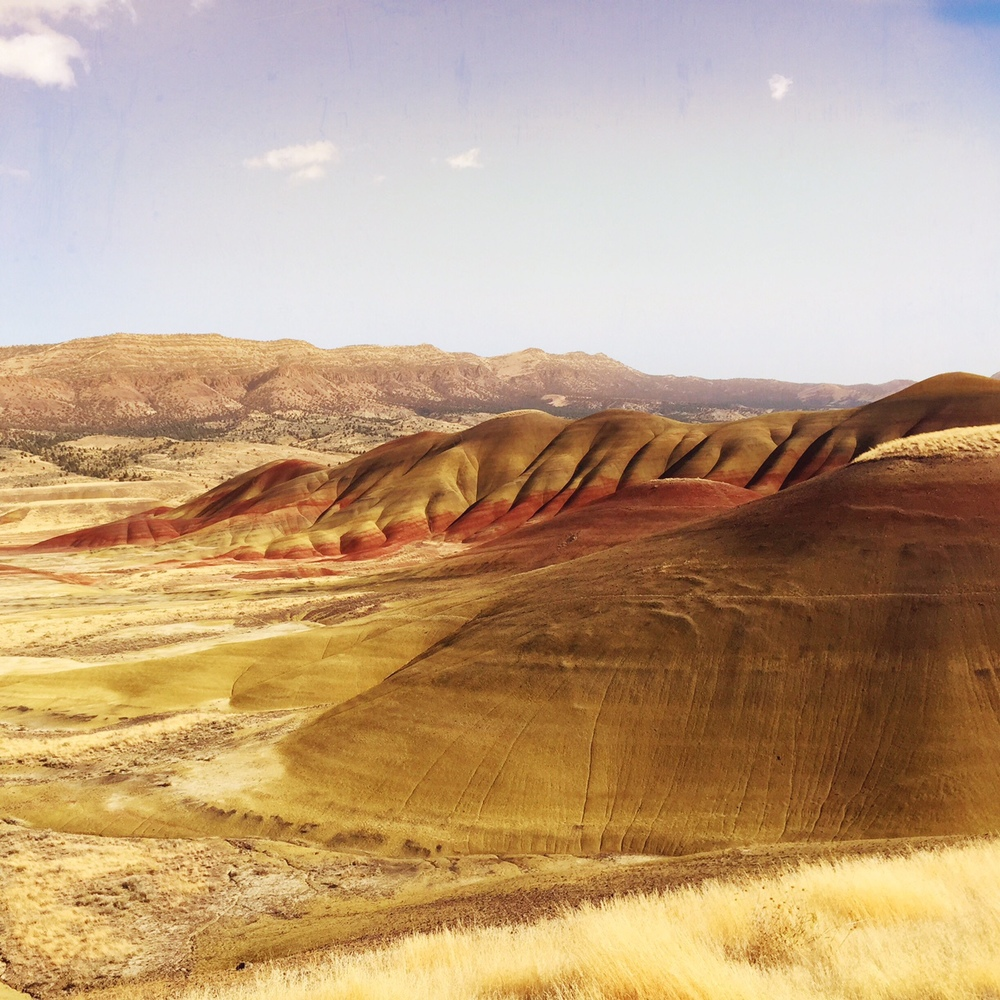John Day Fossil Bed