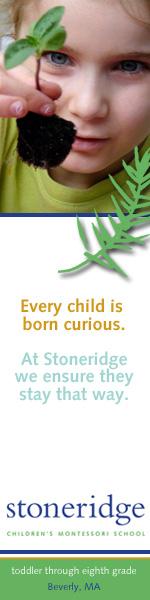 Stoneridge Children's Montessori School:    Web ad design for private Montessori K-8 school.