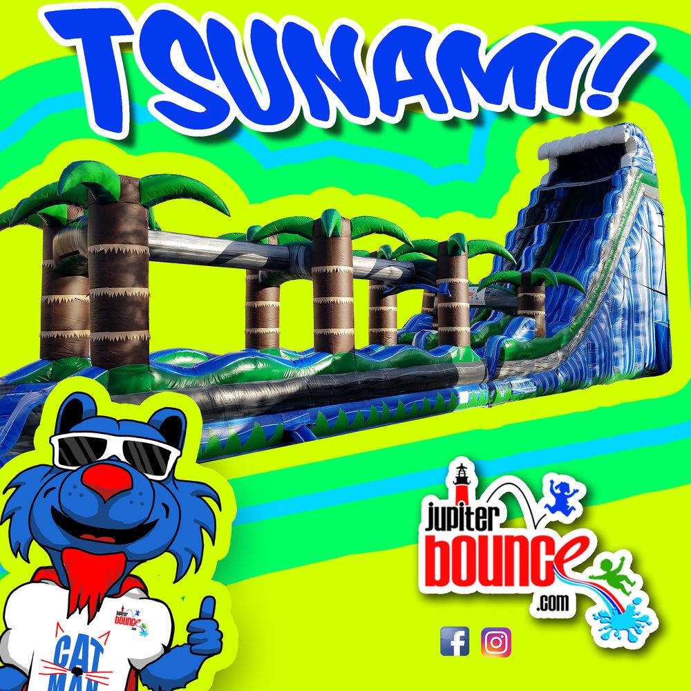Tsunami2.jpg