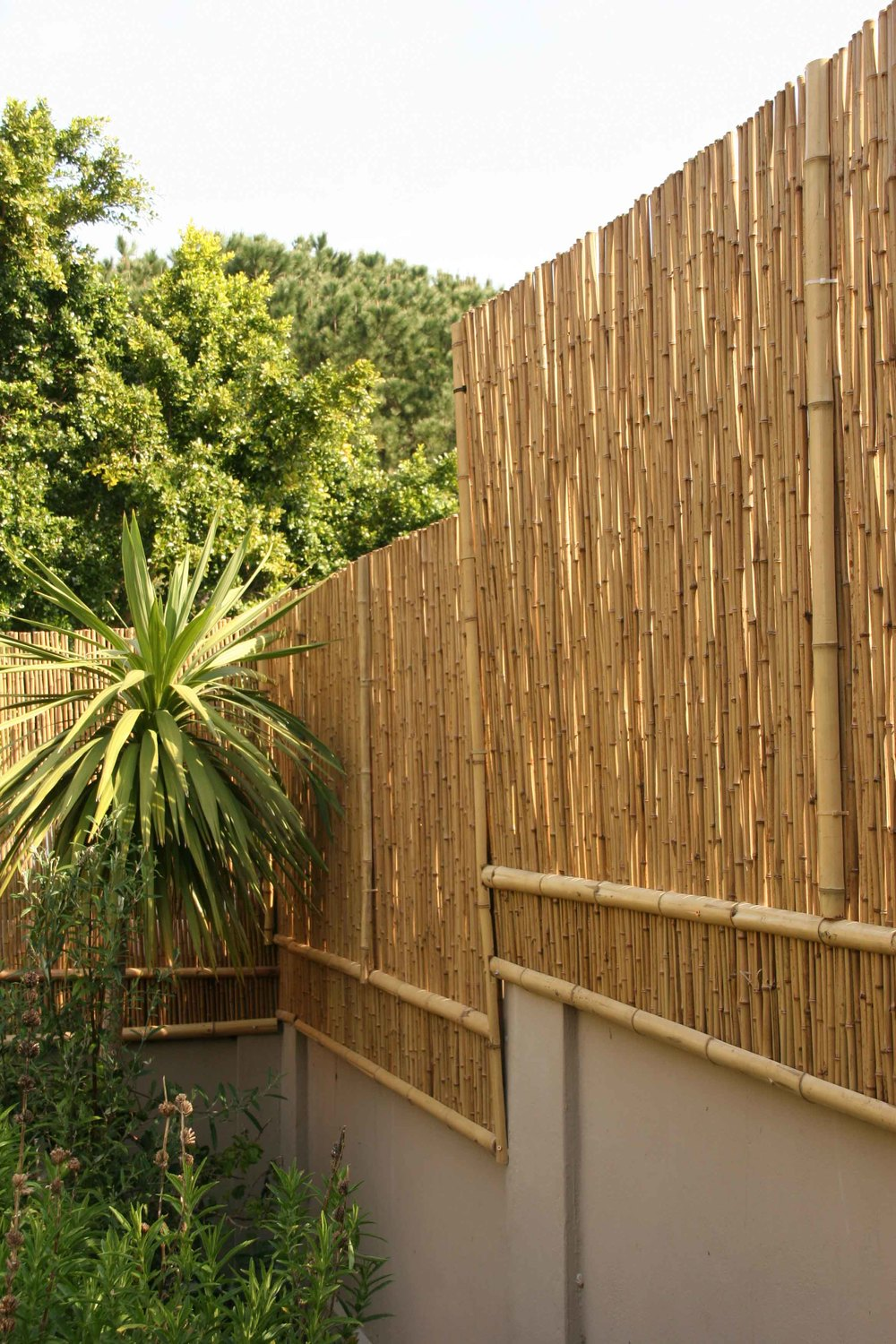 bamboo rolled fencing with internal galvanized steel wire