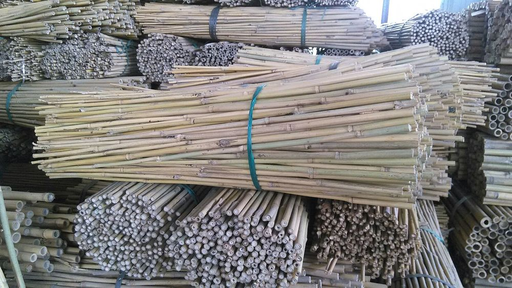 Bamboo poles stakes — brightfields natural trading company