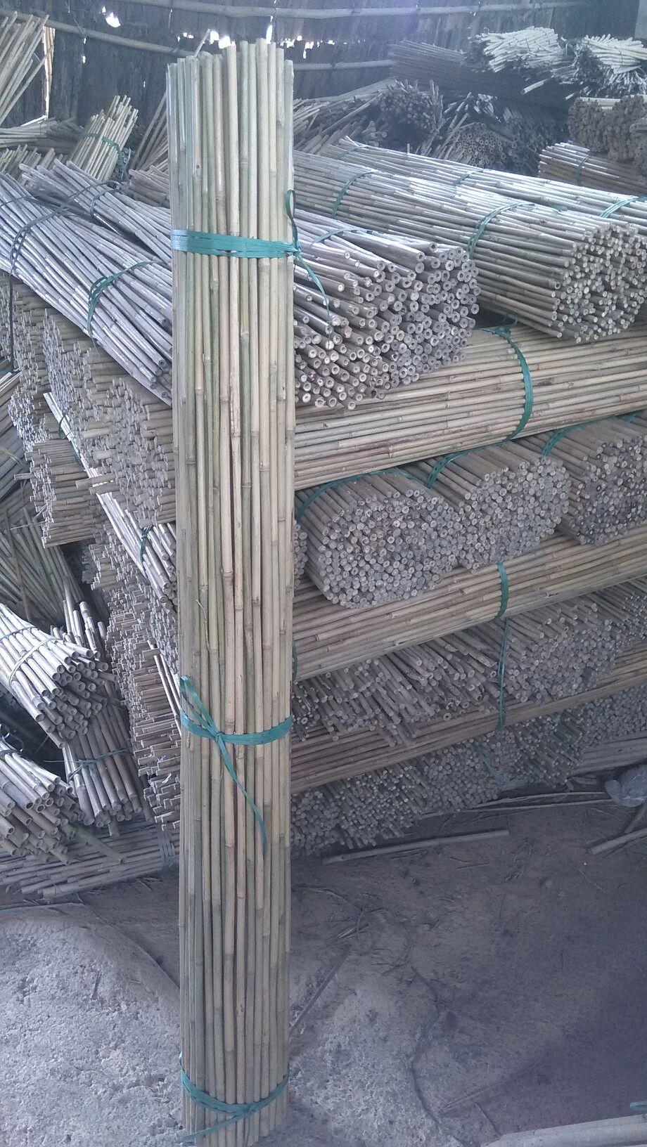 12-14mm Bamboo 150cm A.jpg