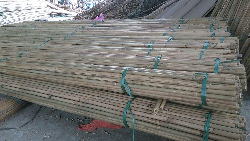 20-22mm Bamboo A.jpg