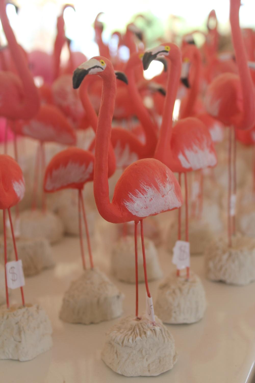 Closest I got to Flamingos :0