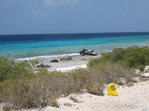 Red Beryl Dive Site