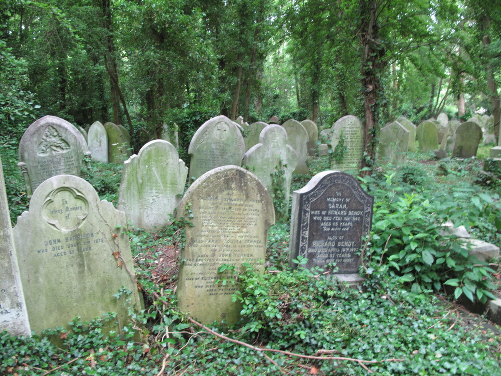 beautiful old graves