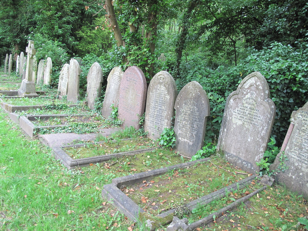 graves from the 1800's