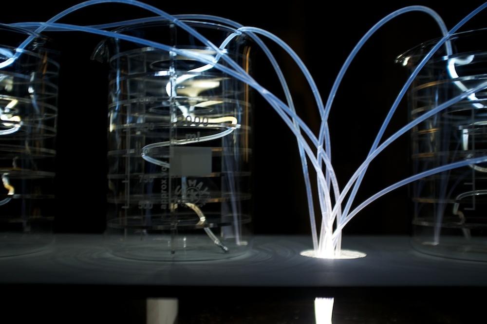 fibres (5).jpg