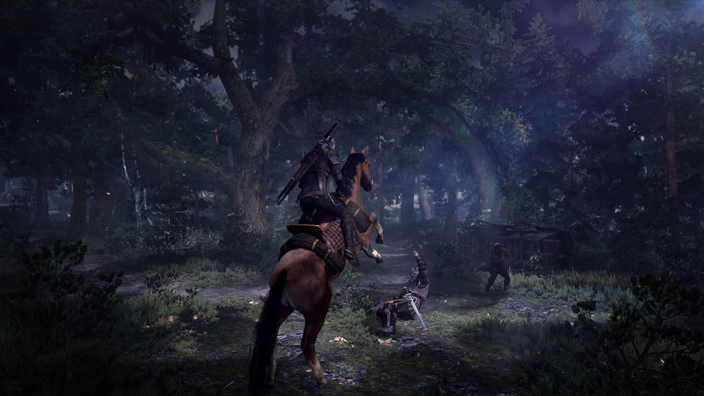 6251_The_Witcher_3_Wild_Hunt_Fight_In_the_Woods.png