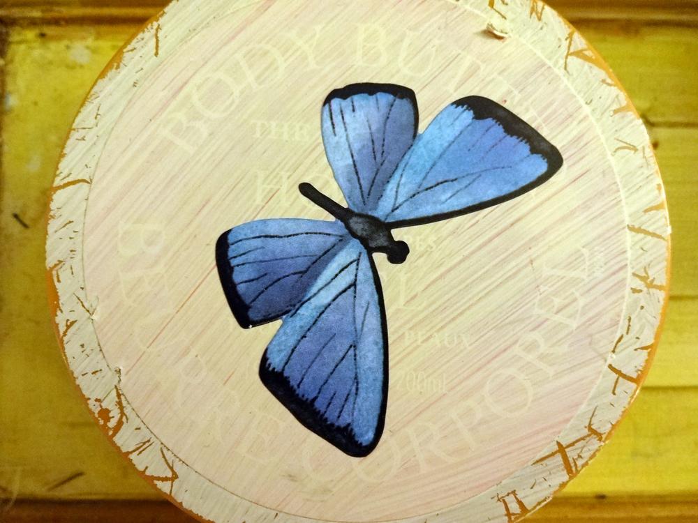 _butterfly.JPG
