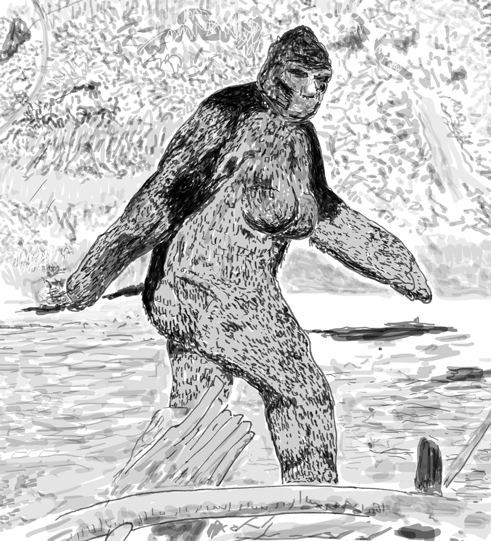 The creature in the Patterson-Gimlin footage of 1967 - now affectionately known as 'Patty' within the Bigfoot research community - seemingly has breasts comparable to those of some humans. Is it coincidental that Roger Patterson was very familiar with William Roe's female Bigfoot of the 1950s (see below)? Or is this consistent with the ostensible biological reality of this animal? Because images of the Patterson-Gimlin film are copyright protected (like virtually all images of Bigfoot), I made this myself and it's available for use. Image: Darren Naish.