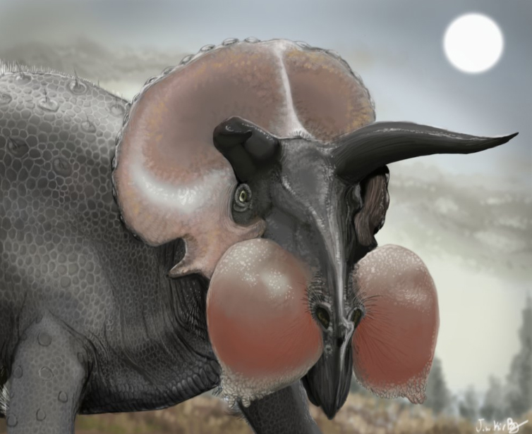 It's nothing to with Ben Garrod's books, but I thought I'd include another image of ceratopsian nose balloons for good measure. This brilliant piece is by J. W. Kirby and the original can be seen  here at KirbyniferousRegret's deviantart page . Image: J. W. Kirby.
