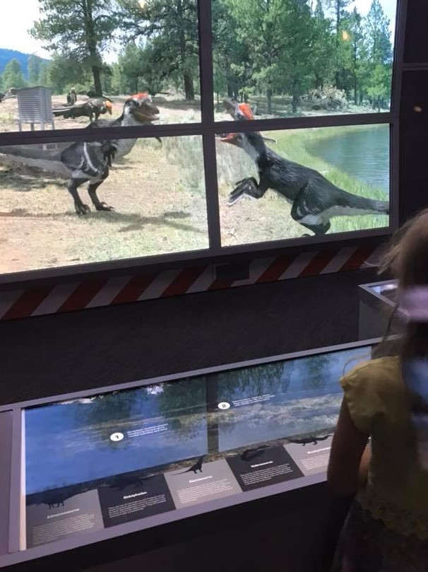There's so much to see through the windows that, even after multiple visits, I still haven't seen it all. In this sequence (seen while looking across the  Dakotaraptor  nesting colony), two female dromaeosaurs engage in a squabble. Image: Kerry Mulvihill.