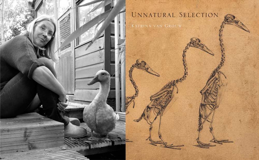Katrina van Grouw (with duck), and the cover of her amazing 2018 book  Unnatural Selection  (to be reviewed here, hopefully soon). Images: (c) Katrina van Grouw.