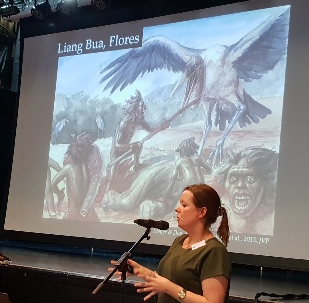 Hanneke Meijer talks about the giant marabou storks and other birds that lived alongside the hobbits (and other mammals) of Flores in the past. The artwork is by Simon Roy. Image: Darren Naish.