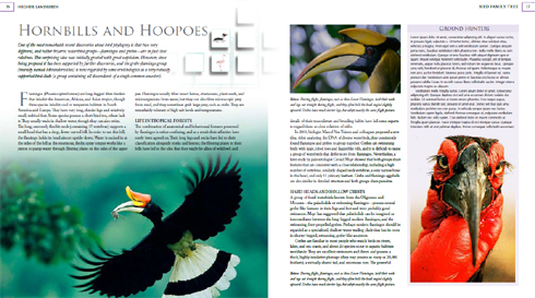 books-Feb-2019-Naish-bird-book-screen-cap-hornbills-pp-June-2011-490-px-tiny-Feb-2019-Darren-Naish-Tetrapod-Zoology.jpg