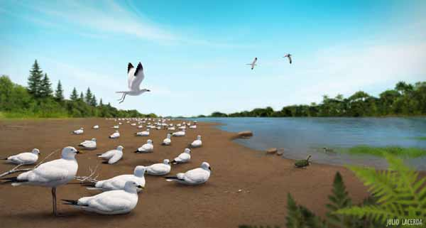 Remember this scene? Produced in 2012 by   Julio Lacerda  , it depicts the possible appearance of the enantiornithine nesting colony we infer for the locality. Maybe some of the colony did look like this. But it now seems that a few crocodylomorphs and the odd lizard were in the immediate area as well. Image:   Julio Lacerda  . UPDATE: this is a horribly lo-res version of the image, I aim to publish a better one in time.