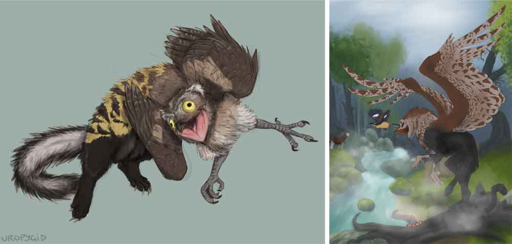 "At left, a marbled polecat x potoo griffin, ""the most majestic and noble of griffins"", by uropygid (original  here ). At right, a potoo griffin that combines black panther and potoo features, by Seneca's Art Rocks. Images: (c)  Uncle Max/uropygid ,  Seneca's Art Rocks ."