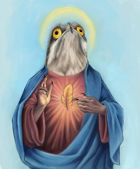 'Our Lord and savior potoo bird'. This image is by dragongirl222, who does   a whole range of potoo-themed merchandise at redbubble  . Image: (c)  dragongirl222 .