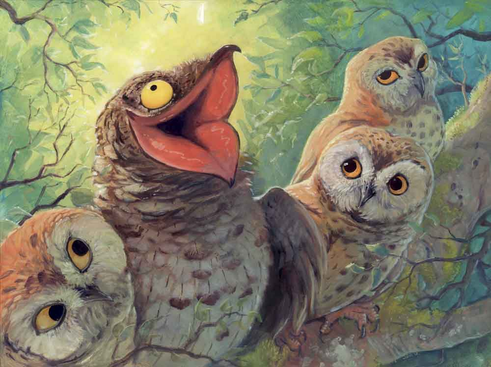 Potoos and some amused (or bored) owls. I love this picture. It's   here on imgur  . Image:  princeemberstorm .