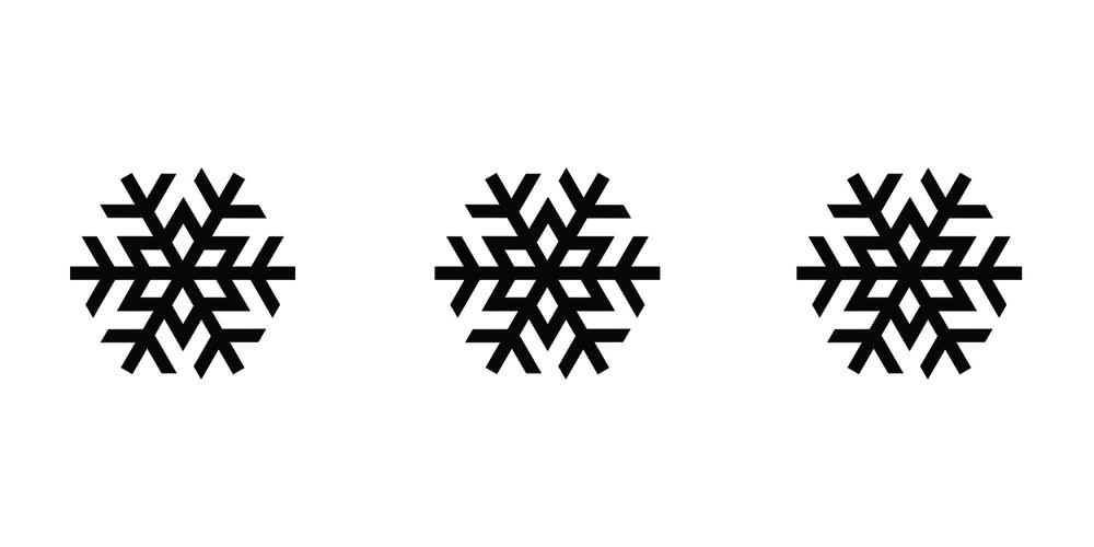 3 SNOWFLAKE.jpg