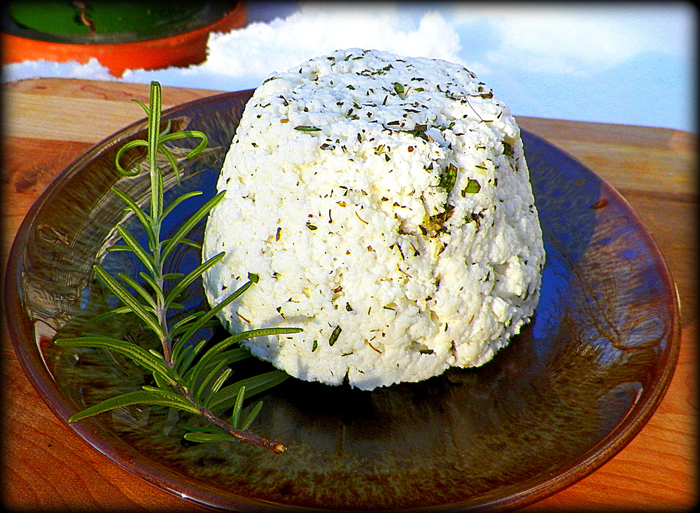 Finished goat cheese.