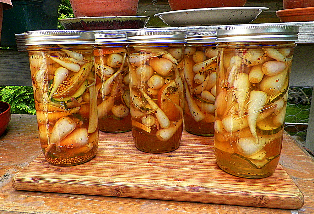 Pickled Ramps with Apple & Cucumber in Honey & Fish Sauce