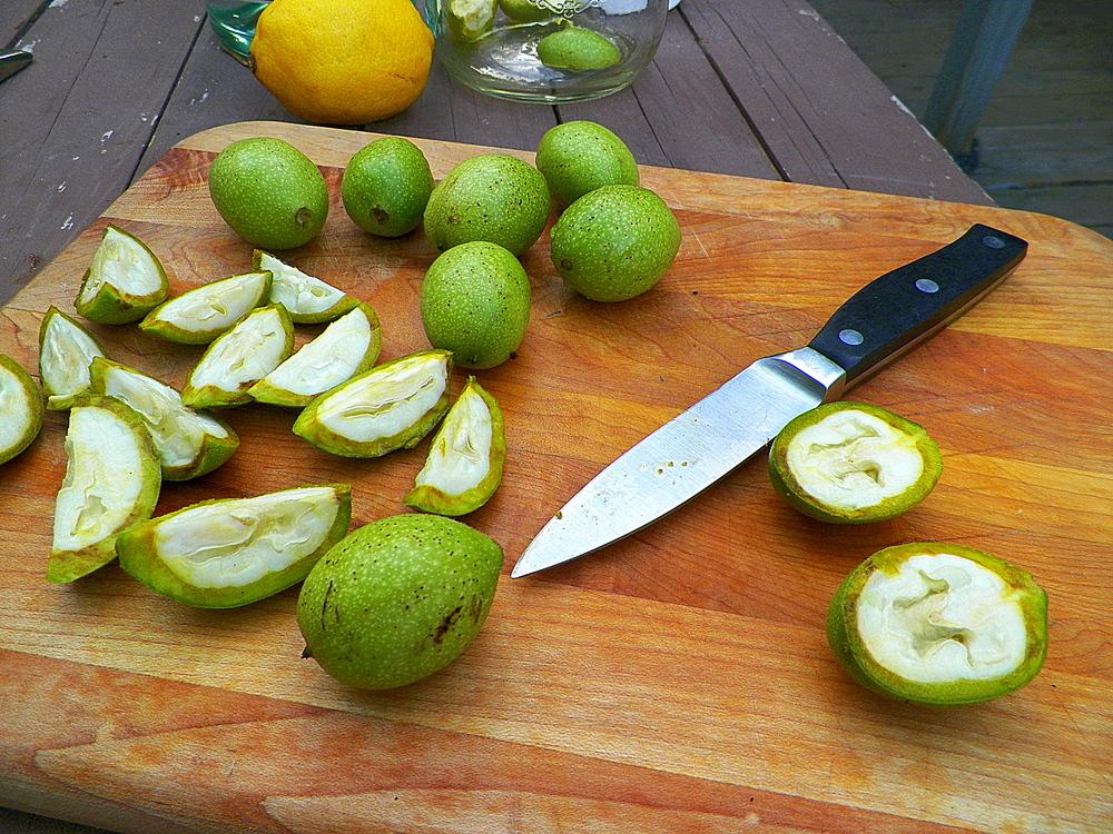 Quartering unripe walnuts.