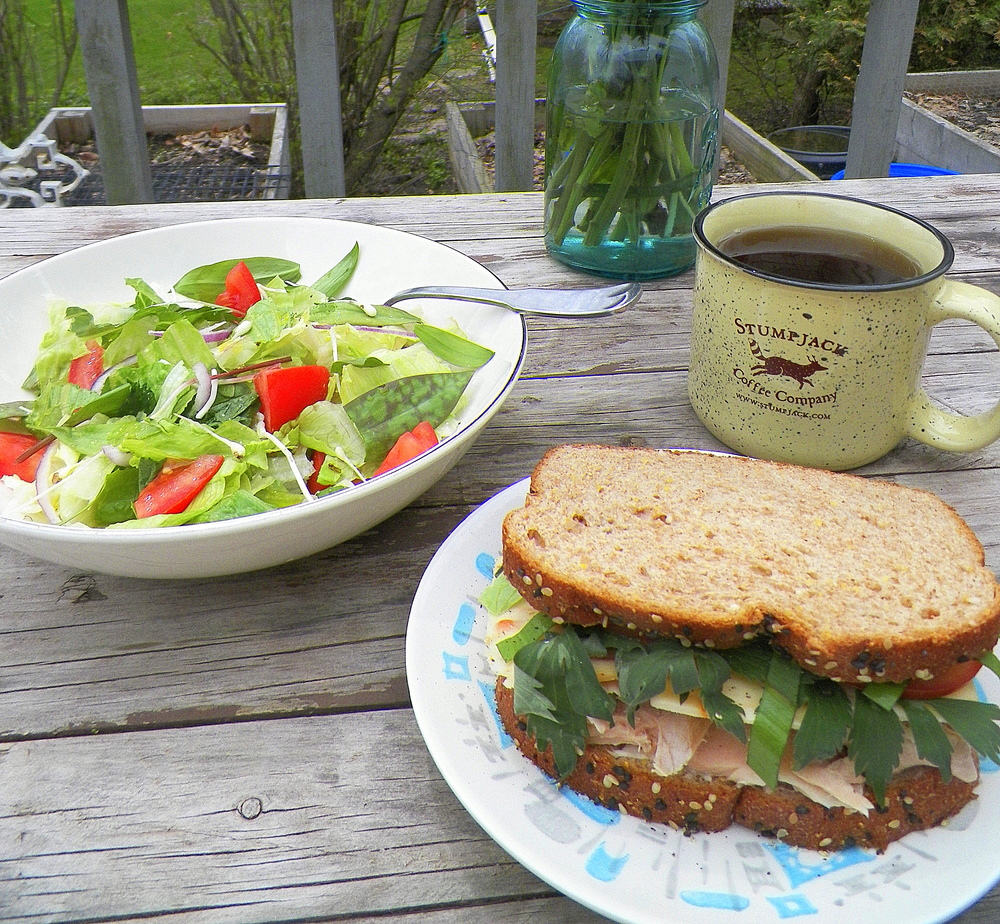 Lunch. Steelhead sandwich with waterleaf and ramp greens (and Carr Valley cranberry chipotle cheese), salad with added trout lilies, garlic mustard, ramp greens, and chaga tea.