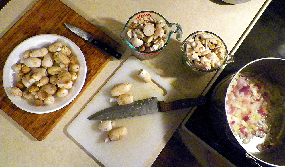 shaggy mane mushroom soup