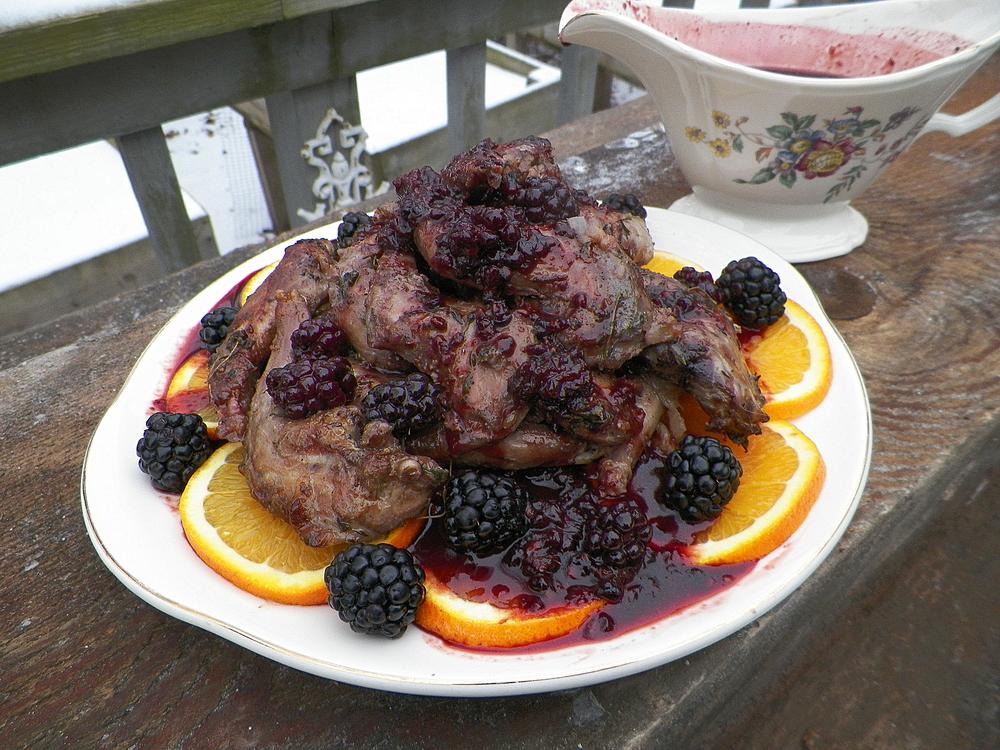squirrel w orange blackberry cranberry sauce