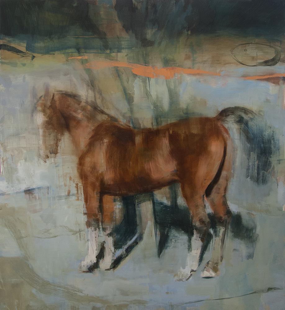 Equus No. 11