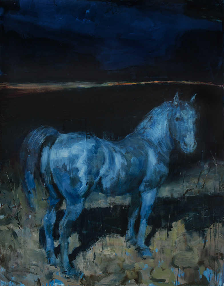 Equus No. 16
