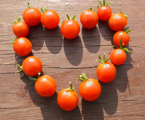 tomato love.jpg