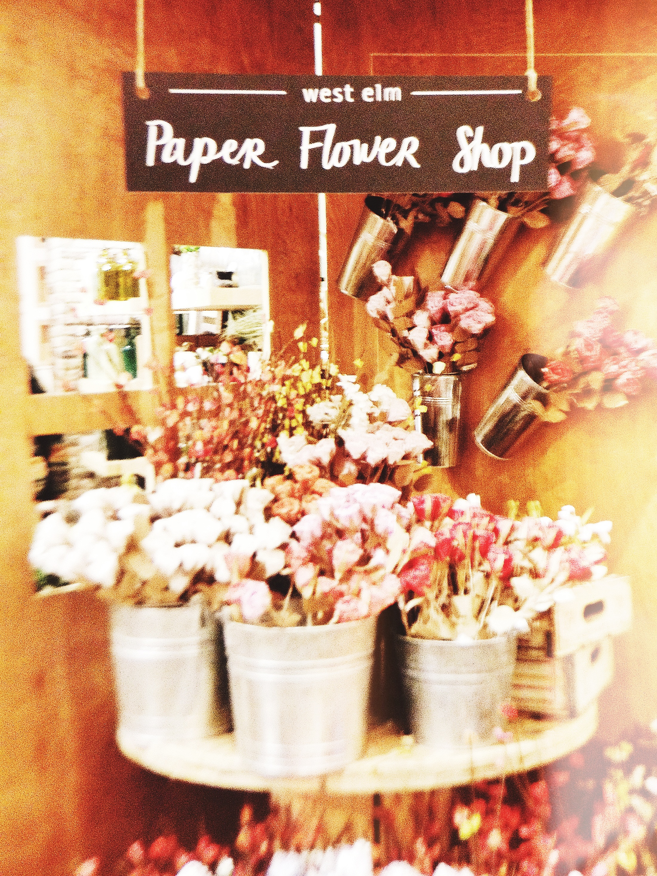 Its all aboot the bout at the west elm chelsea spring social west elm paper flower shop wespringsocial westelm mightylinksfo