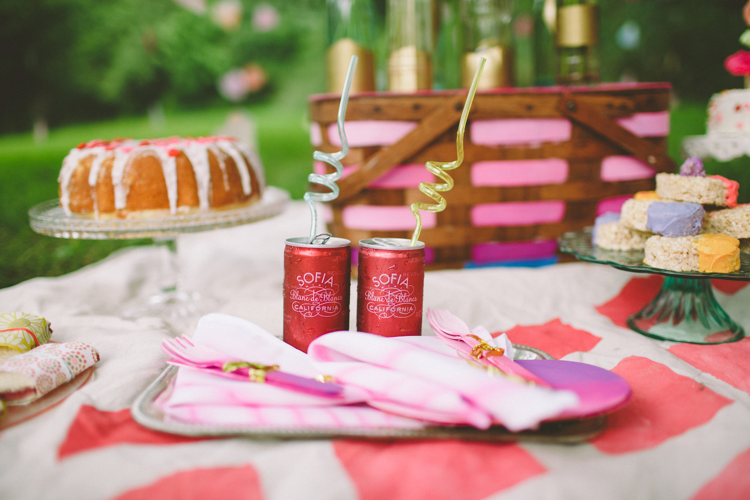 90's summer love styled shoot; photo by with love and embers; hand painted napkins, picnic basket and picnic blanket by sparkle motion decor