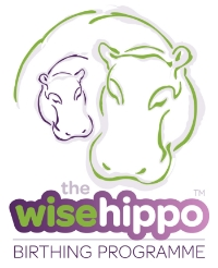Jane became one of the first Wise Hippo Instructors in 2013.