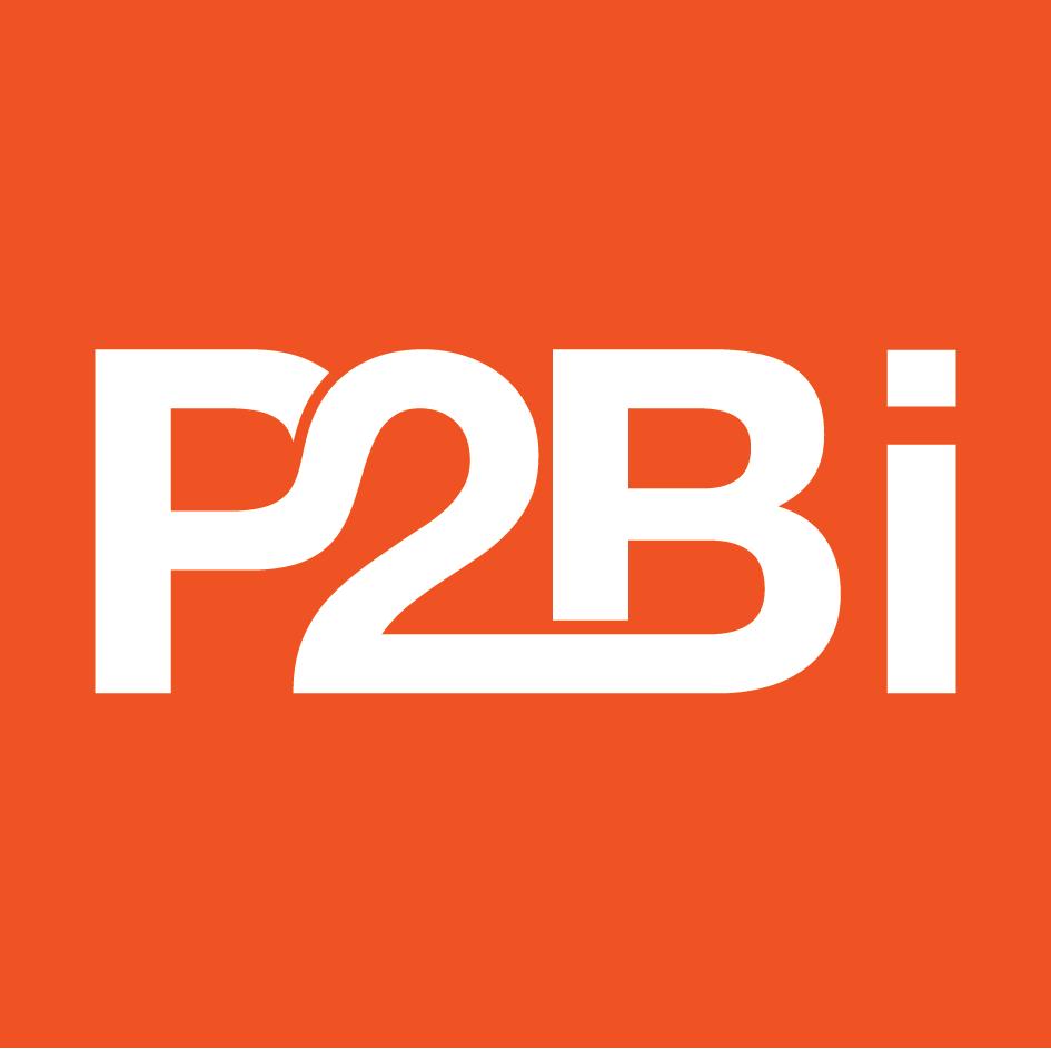P2B investor
