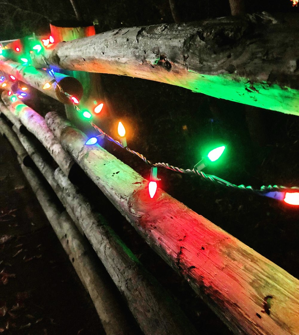 christmas lights at the baton rouge zoo brzoo