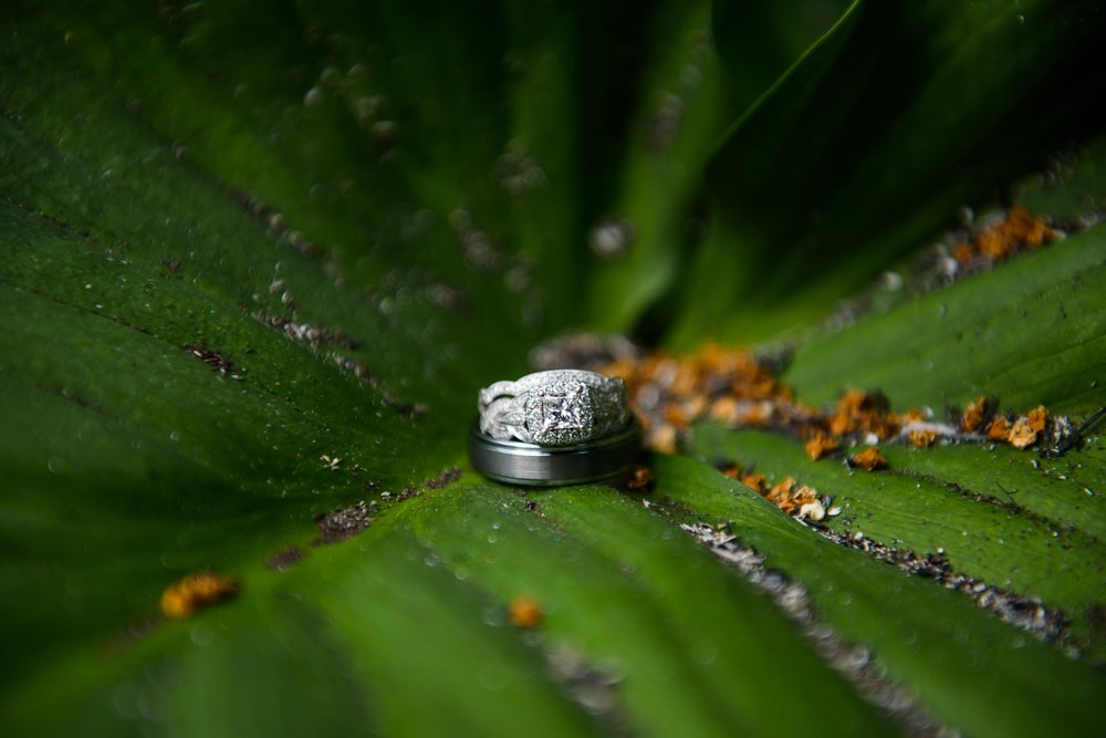 RM 845.jpg