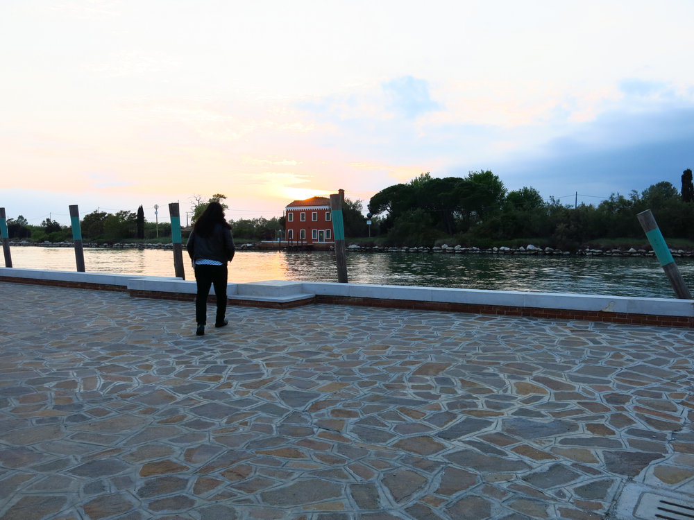 Venice2 2017-6.jpg