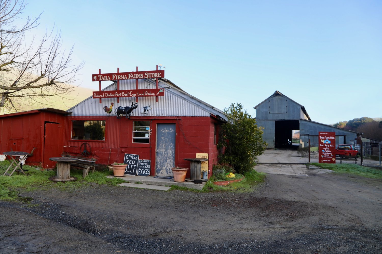 Members Tara Firma Farms Bay Area Meat Csa In Transition Chicken Recipes