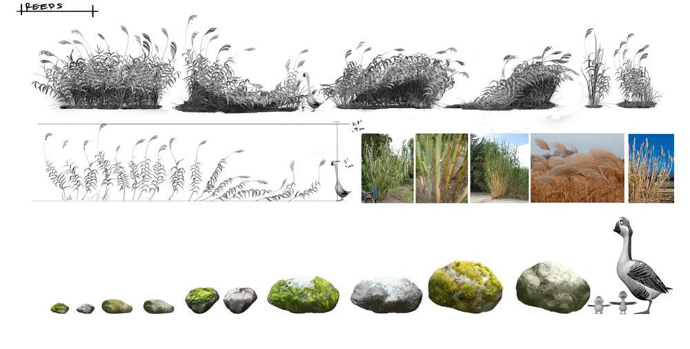 plants_page2.jpg