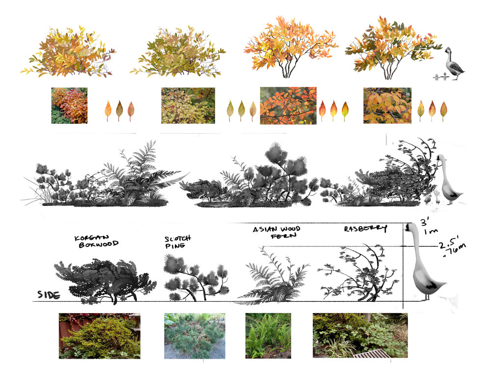 plants_page.jpg