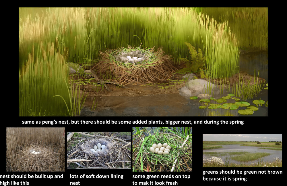 northern_lake_new_nest_closeup_callouts.jpg