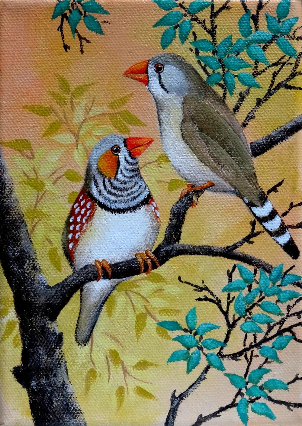Pair of Zebra Finches.JPG